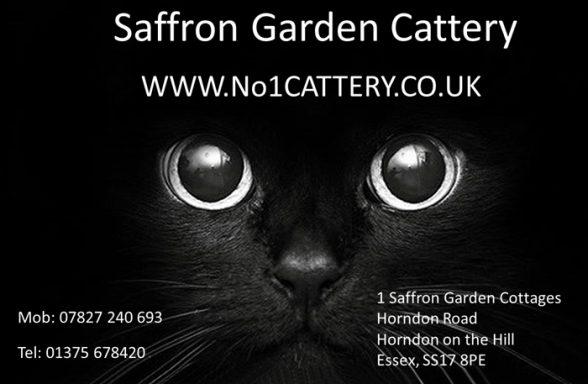 Saffron Garden Cattery