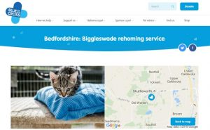 Blue Cross Rehoming Service - Old Warden