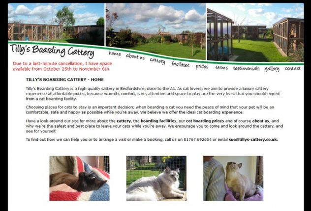Tilly's Boarding Cattery