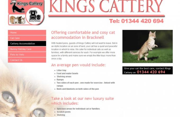 Kings Cattery