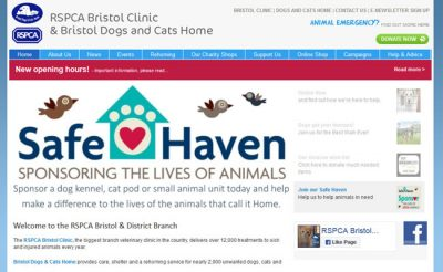 Bristol Dogs and Cats Home - Bristol