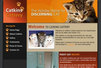 Catkins Boarding Cattery