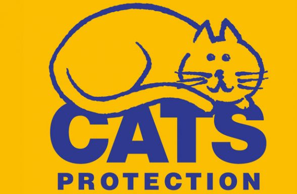 Cats Protection - Bracknell