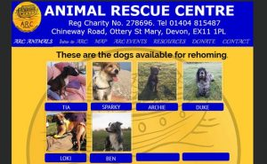 A R C Animal Rescue Centre - Ottery St. Mary
