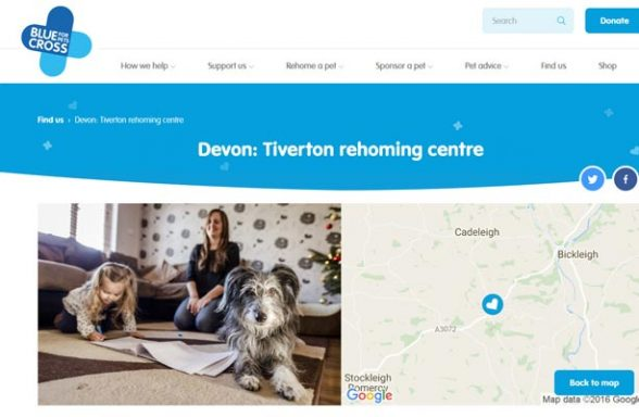 Blue Cross Rehoming Centre - Tiverton