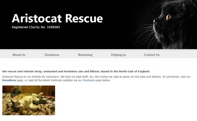 Aristocat Rescue - Newton Aycliffe