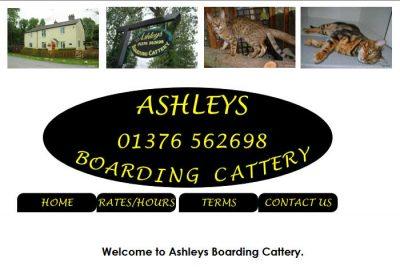 Ashleys Boarding Cattery