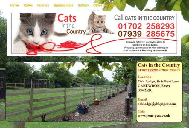 Cats in the Country