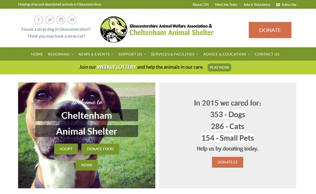 Cheltenham Animal Shelter - Cheltenham