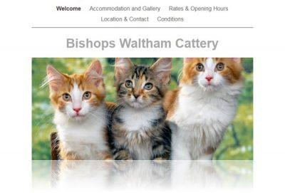 Dog Boarding Bishops Waltham
