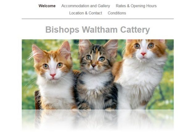 Bishops Waltham Cattery