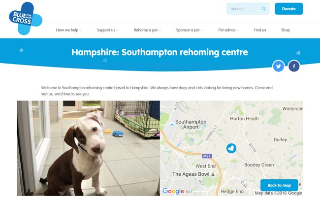 Blue Cross Rehoming Centre - Southampton