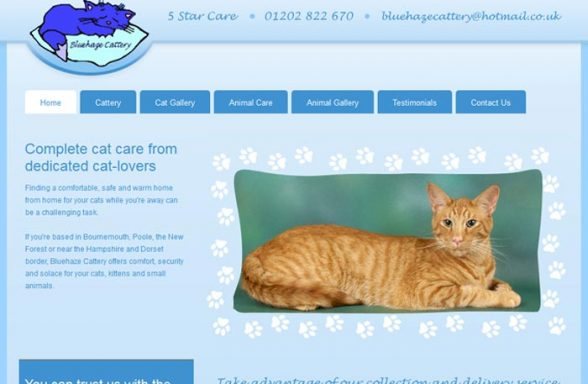 Blue Haze Cattery