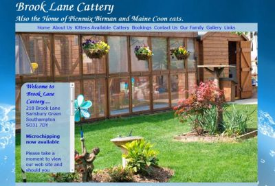 Brook Lane Cattery