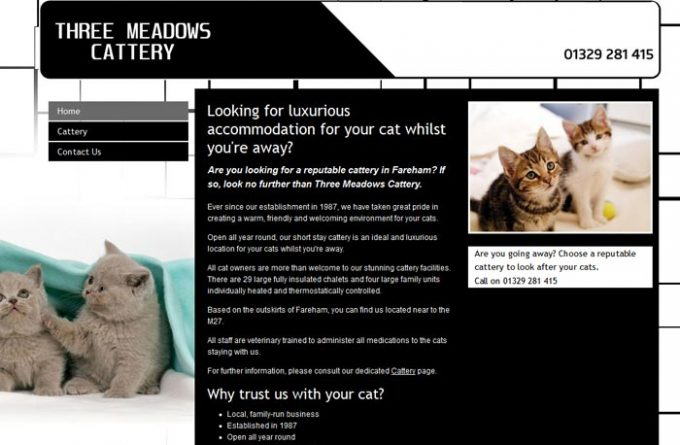 Three Meadows Cattery