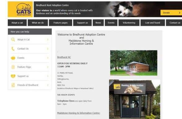 Cats Protection Adoption Centre - Sittingbourne