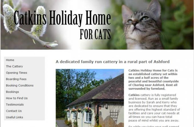 Catkins Holiday Home for Cats