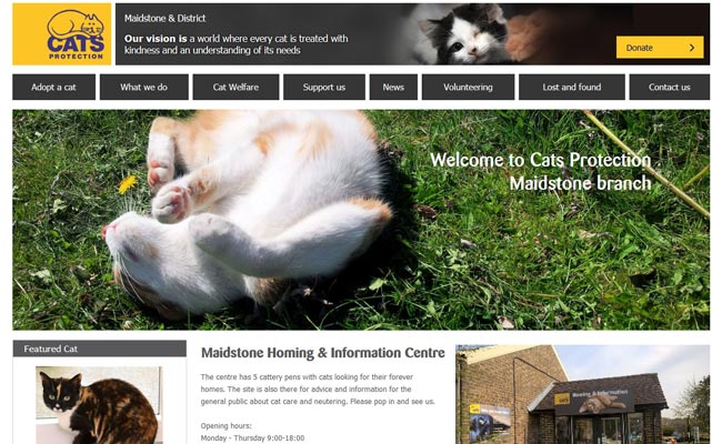 Cats Protection - Maidstone Centre - Maidstone