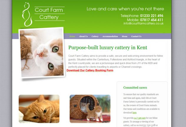 Court Farm Cattery