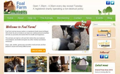 Foal Farm Rescue Centre - Biggin Hill