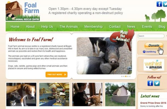 Foal Farm Rescue Centre - Biggin Hill