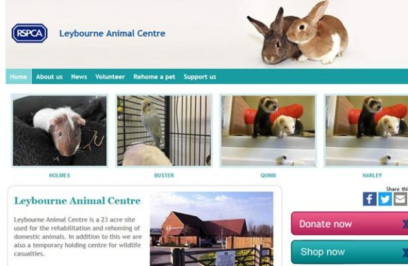 RSPCA Leybourne Animal Centre - West Malling