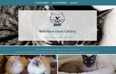 New Barn Farm Cattery