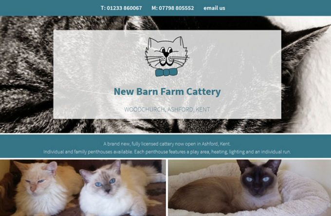 New Barn Farm Cattery