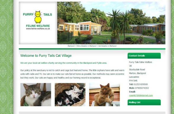 Furry Tails Feline Welfare - Blackpool