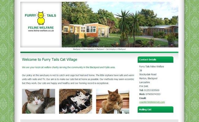 Furry Tails Feline Welfare - Blackpool