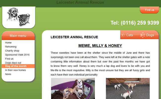Leicester Animal Rescue – Billesdon