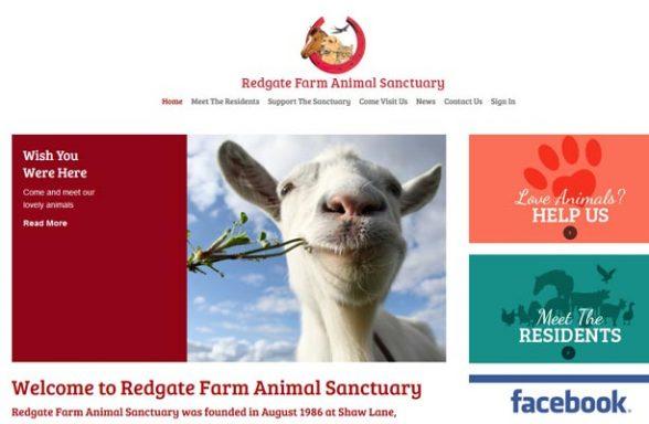 Redgate Farm Animal Sanctuary - Markfield