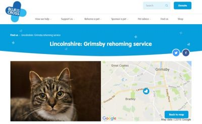 Blue Cross Rehoming Service - Grimsby