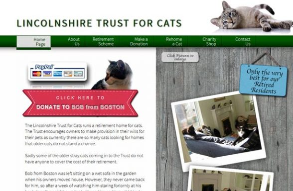 The Lincolnshire Trust for Cats - Market Rasen