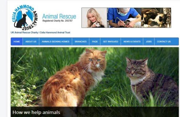 Celia Hammond Animal Trust - Canning Town