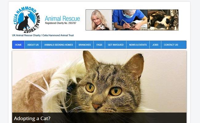 Celia Hammond Animal Trust - Lewisham