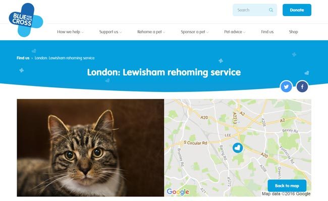 Blue Cross Rehoming Service - Mottingham