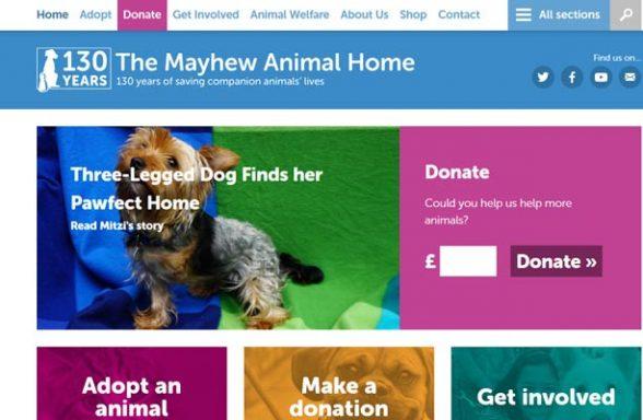 The Mayhew Animal Home - Kensal Green