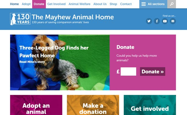 The Mayhew Animal Home - Kensal Green