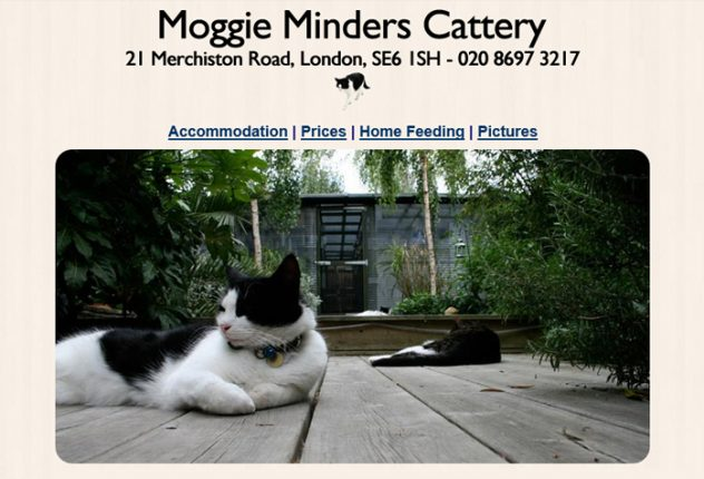 Moggie Minders Cattery