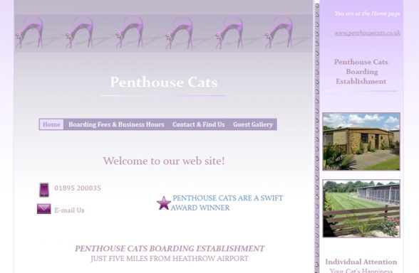 Penthouse Cats