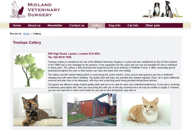 Treetops Cattery