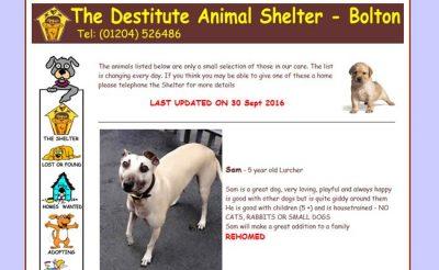 Destitute Animal Shelter - Bolton