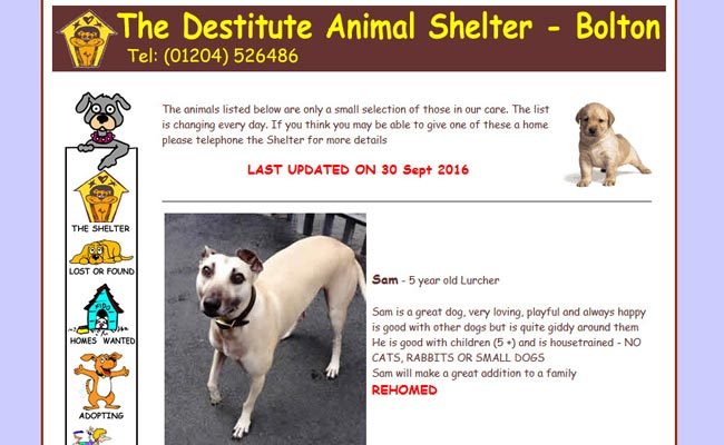 Destitute Animal Shelter - Bolton