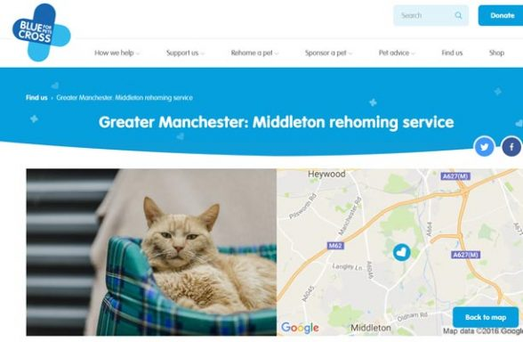 Blue Cross Rehoming Service - Middleton