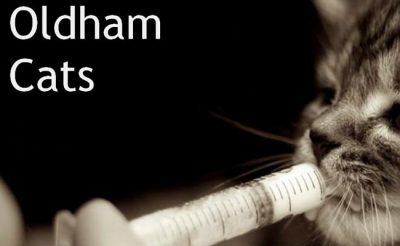 Oldham Cats - Manchester