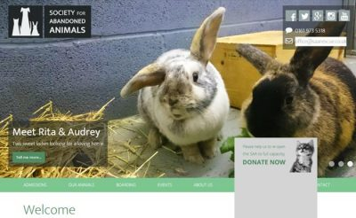 Society for Abandoned Animals - Manchester