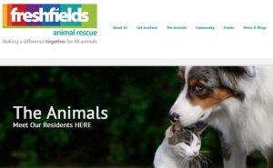 Freshfields Animal Rescue Centre - Liverpool