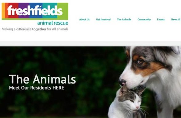 Freshfields Animal Rescue Centre - Liverpool