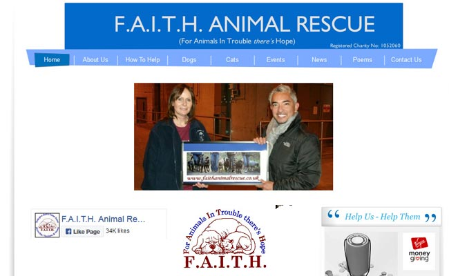 FAITH Animal Rescue - Norwich